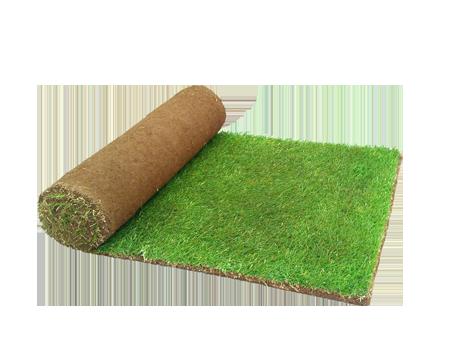 Artificial Grass copy